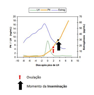 grafico_inseminacao_ovulacao