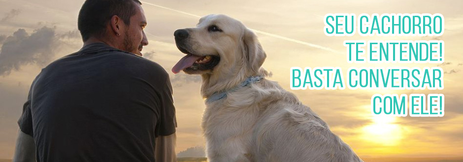 Seu cachorro te entende! Basta conversar com ele!