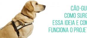Conheça mais sobre esse projeto essencial para deficientes visuais