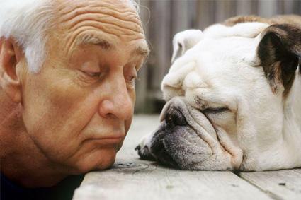 o comportamento do cachorro é o espelho de como seu dono trata as pessoas ao seu redor