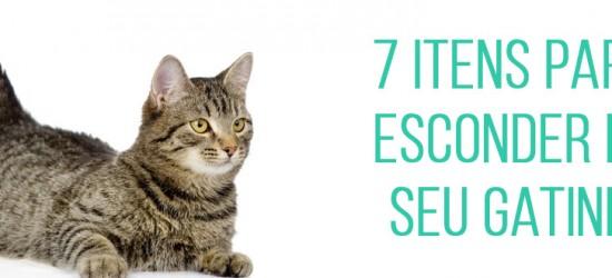 7 itens para esconder do seu gatinho