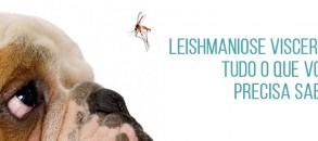 09_leishmaniose-capa