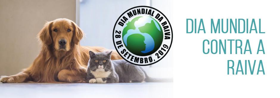 Dia Mundial contra a Raiva: América Latina e Caribe estão mais perto de eliminar mortes pela doença