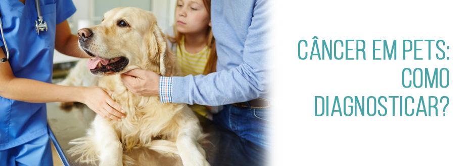 Câncer em pets: como diagnosticar?