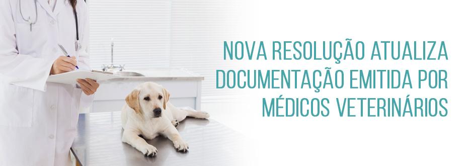 Nova resolução atualiza documentação emitida por médicos veterinários