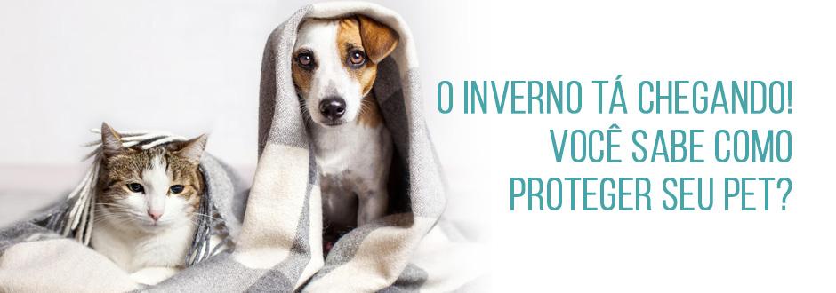 O inverno tá chegando! Você sabe como proteger seu pet?